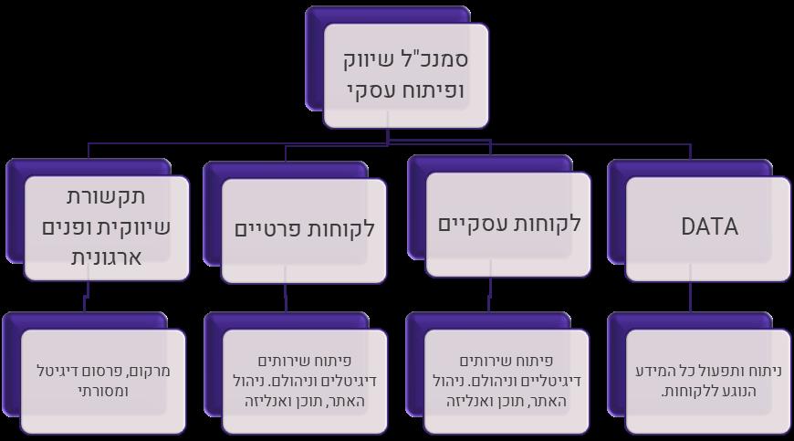 מבנה מוטה לקוחות