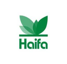 קבוצת חיפה